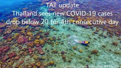 La Thaïlande annonce 15 nouveaux cas de coronavirus