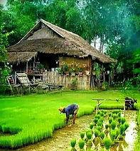circuit isaan by thailande evasion