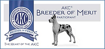 AKC breeder of merit for Great Danes.