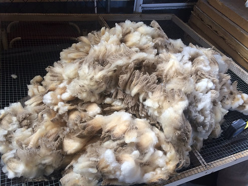 SheepShare Tier #1 Deposit (Full Fleece)