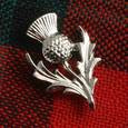 Silver Thistle brooch.jpg