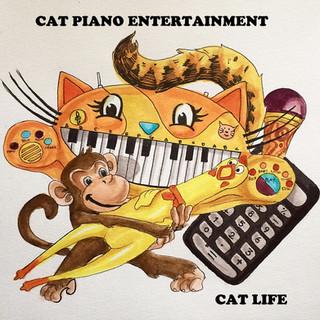 Cat Piano Entertainment