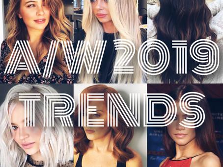 2019 A/W Hair Trends
