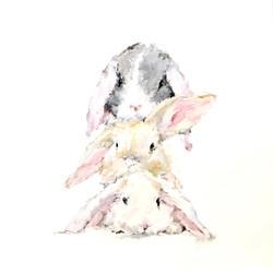 SPD Bunny Stack 001
