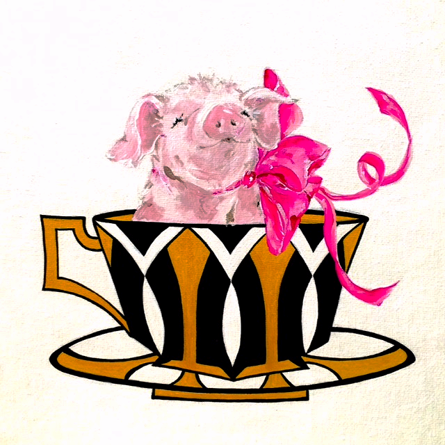 Teacup Pig no.1