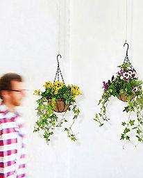 plantas-artificiales-pensamiento-ranka-e