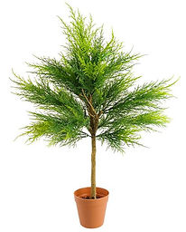 plantas-artificiales-cipres-ranka-espaci