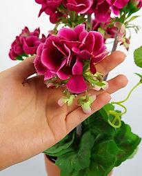 plantas-artificiales-begonia-ranka-espac