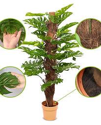 plantas-artificiales-monstera-2.jpg