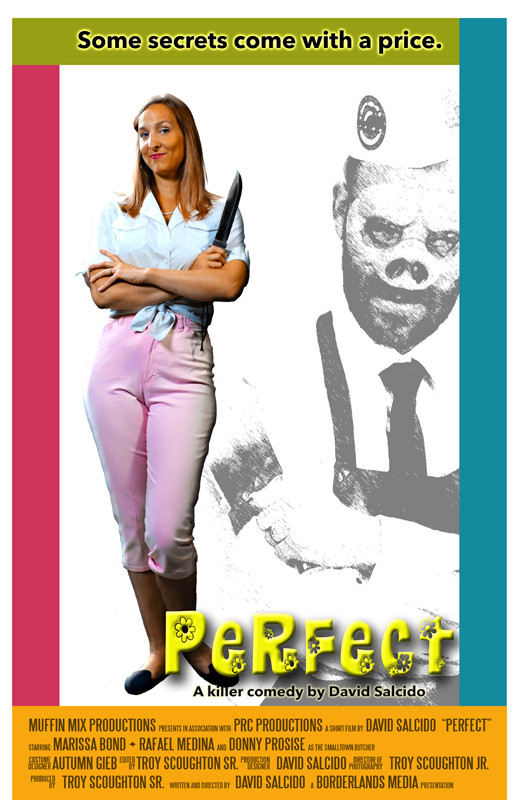 Perfect Poster02web.jpg