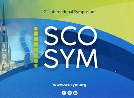 Det andra ScoSym webinariet hölls 6 juni