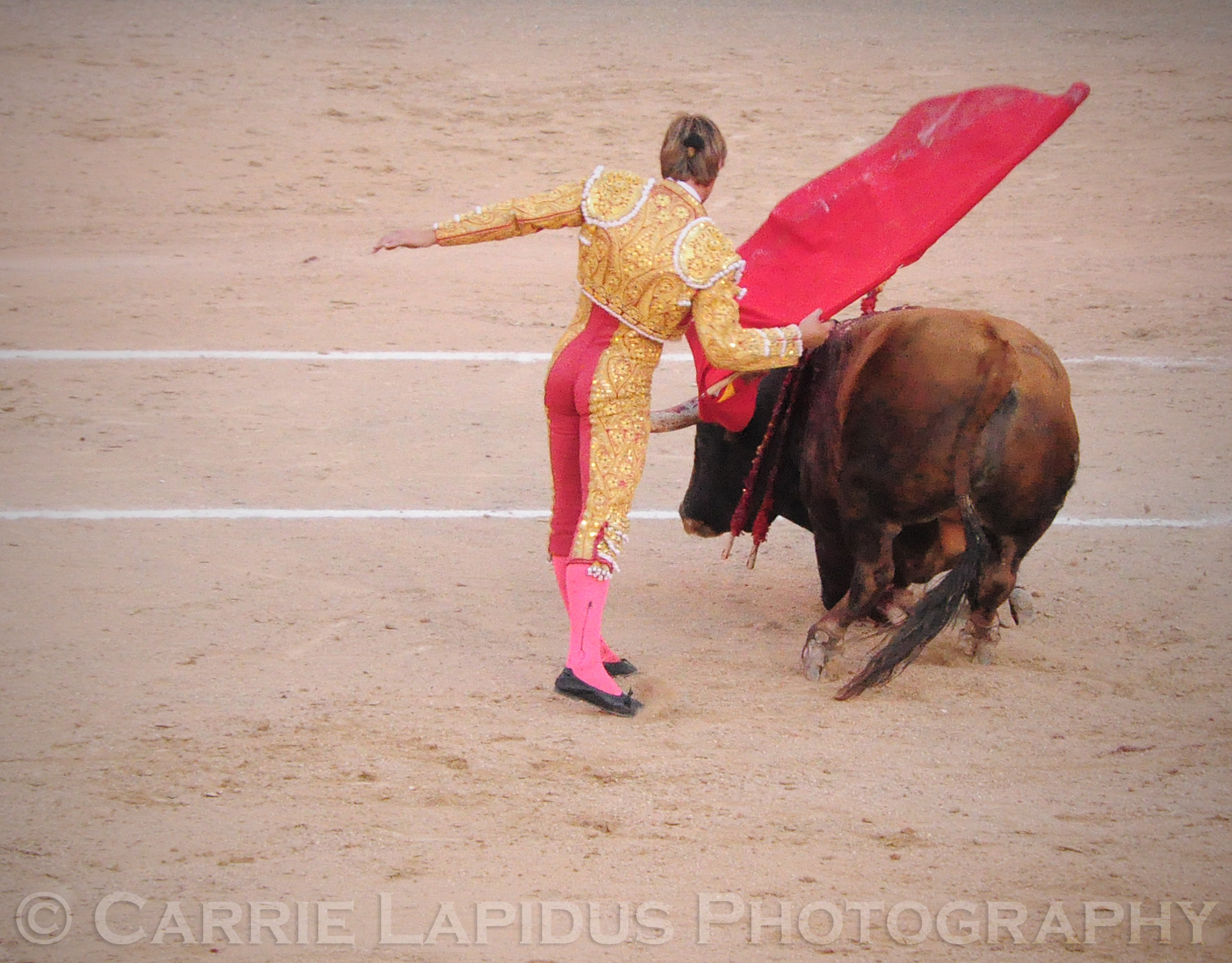 Madrid Bull Fight