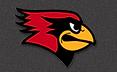 BJS Logo.png