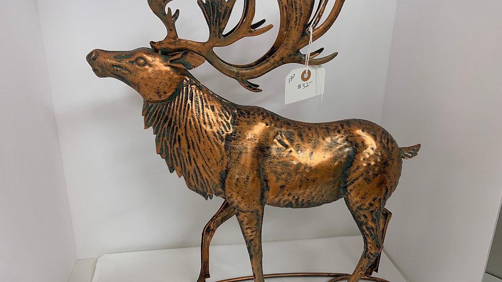 Beautiful Copper Elk
