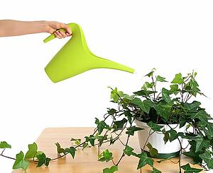 arroser les plantes.png