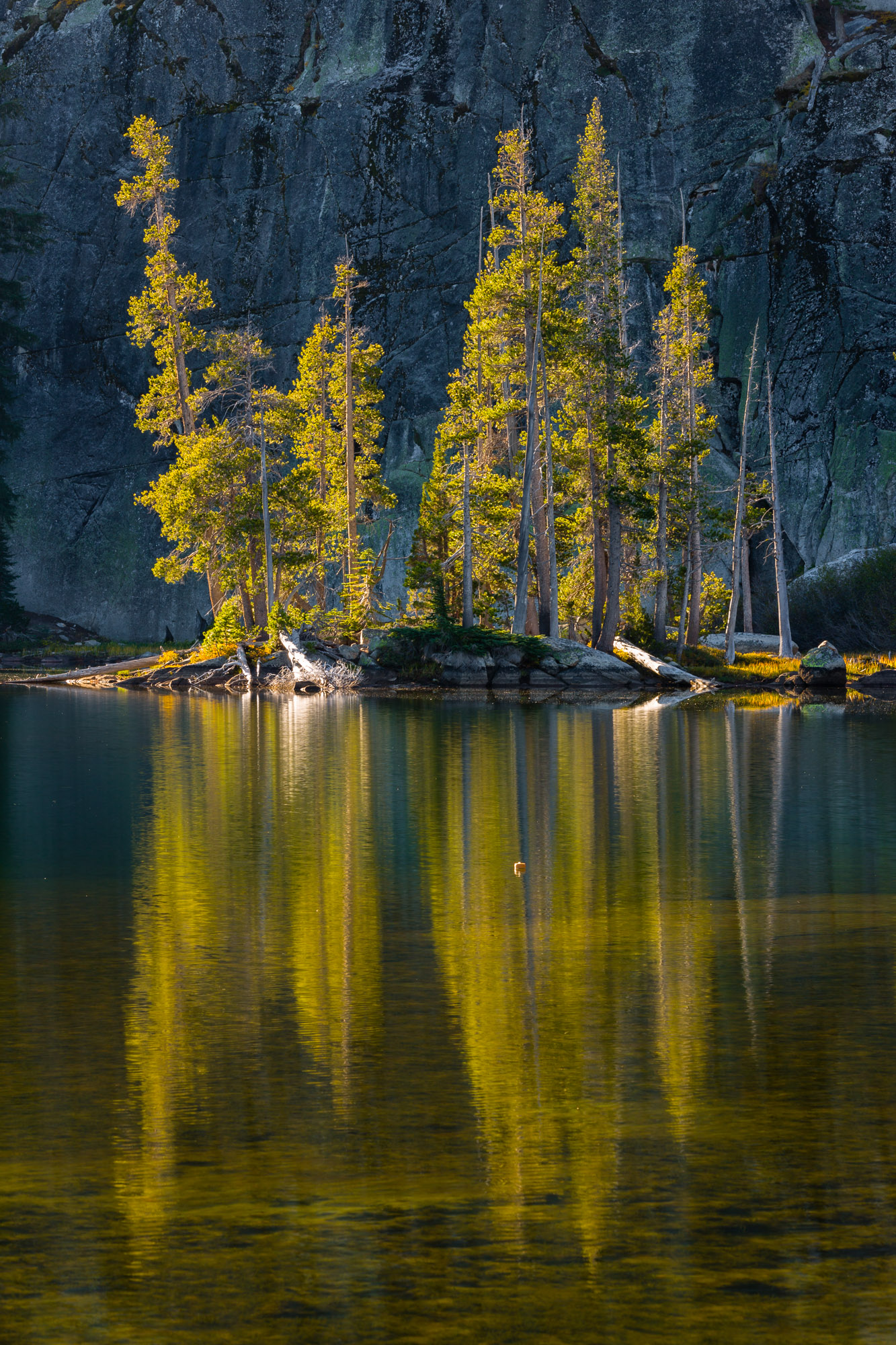 Big Meadow Hike-338