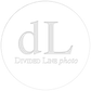 dL_logo_clear.png