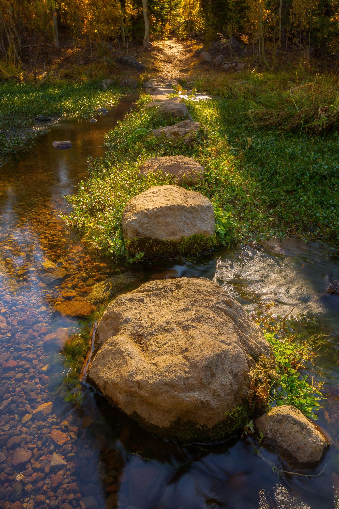 Big Meadow Hike-43-Edit