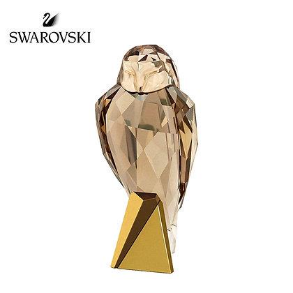 Swarovski OWL 貓頭鷹,裝飾品