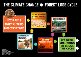 CLIMATE-CYCLE-POSTER-FINAL.png