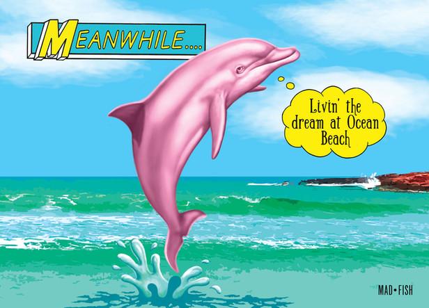 Livin'-the-Dolphin-Dream web.jpg