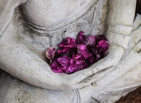 Meditation - The Self Examination Process