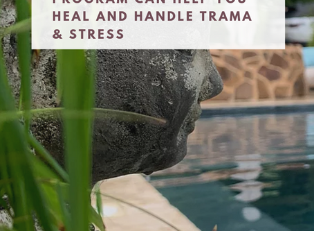 Learn How Committing to a Meditation Program Can Help You Heal and Handle Trauma & Stress, Repost!