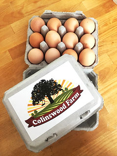 Logo Design for Colinswood Farm in Tunbridge, VT