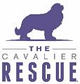 Cavalier Rescue.png