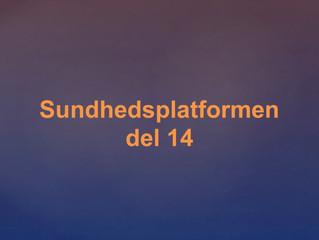 Region Sjælland bør vente med Sundhedsplatformen