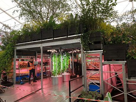 Chelsea Flower Show 2019.jpeg