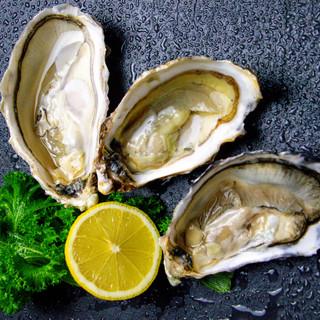 Photo of Porlock Bay Oysters