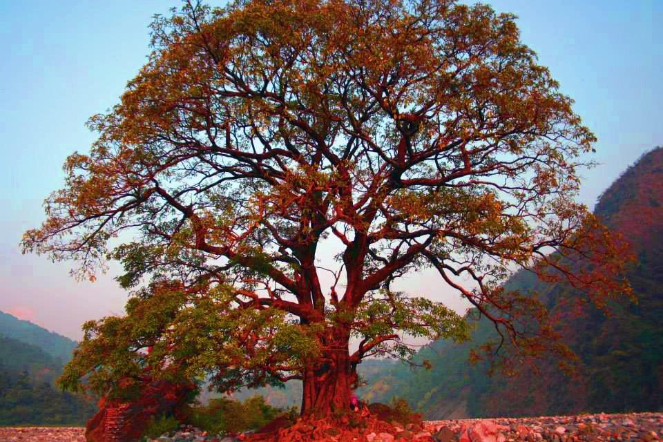 thumbnail_Inde haidakhan
