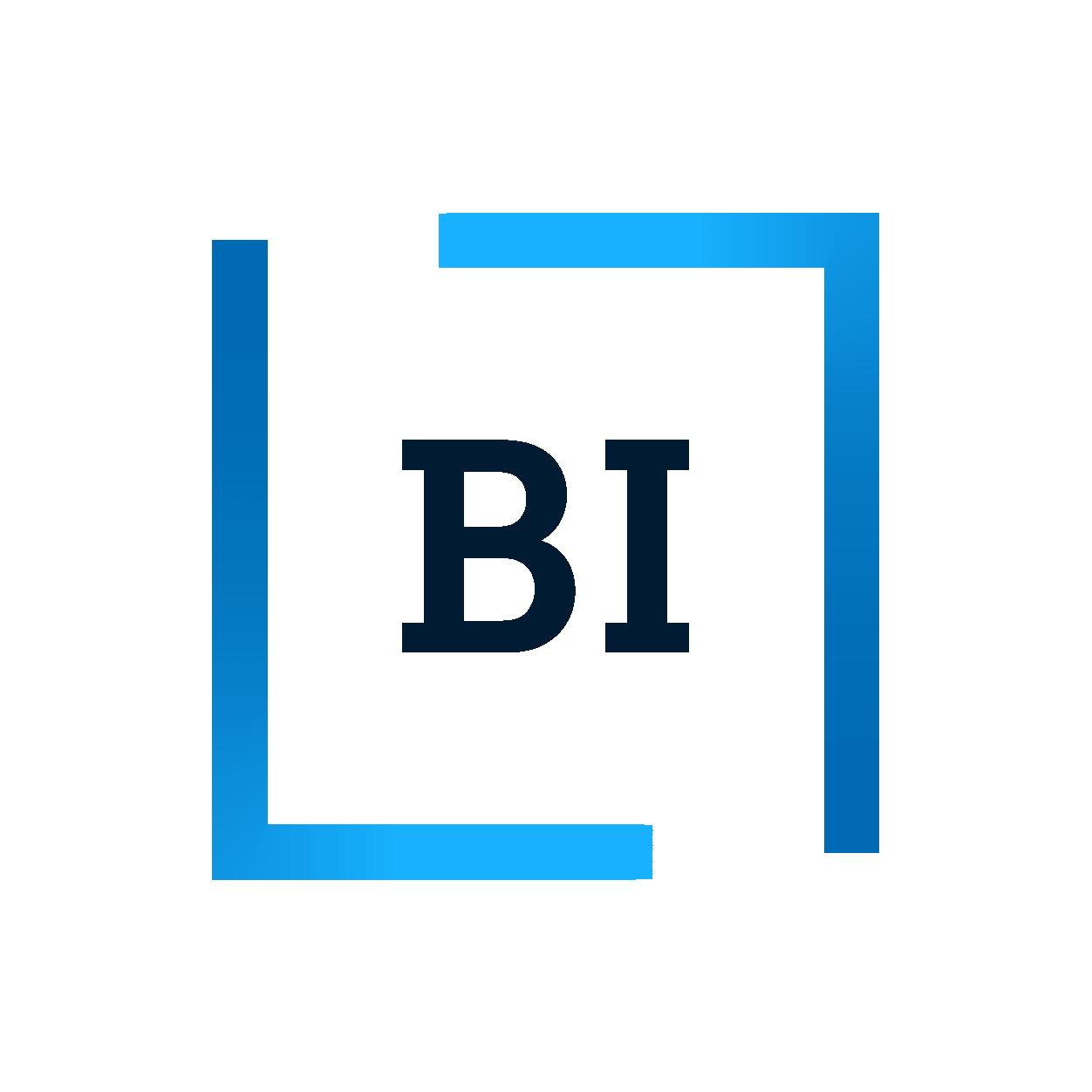 BI Masterprogram