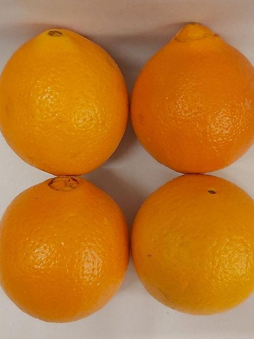 Orange Large