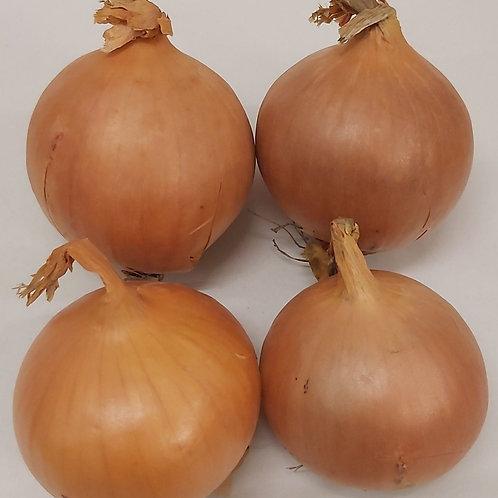 English onions 1kg
