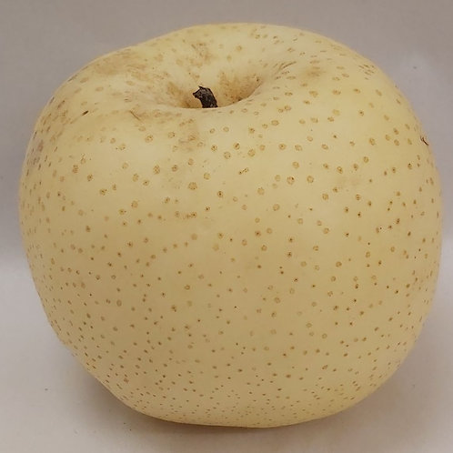 Asian Pear (Nashi Pear)
