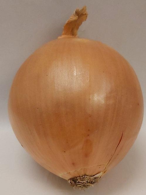 Spanish Onions (large) 1kg