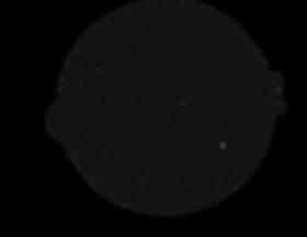 sceau noir.png