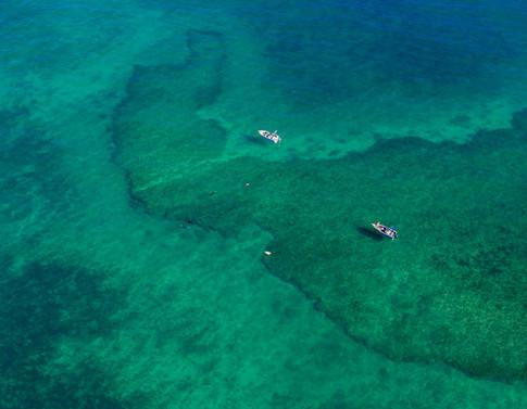 On the reef - near Legendre