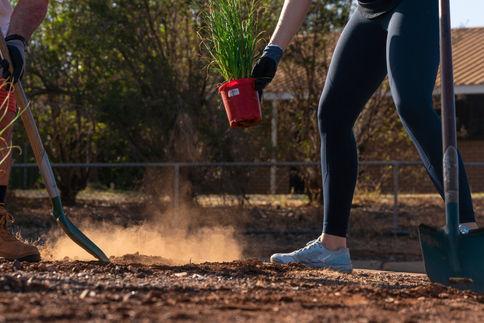 CofK - Community Planting Initiative_Fuz