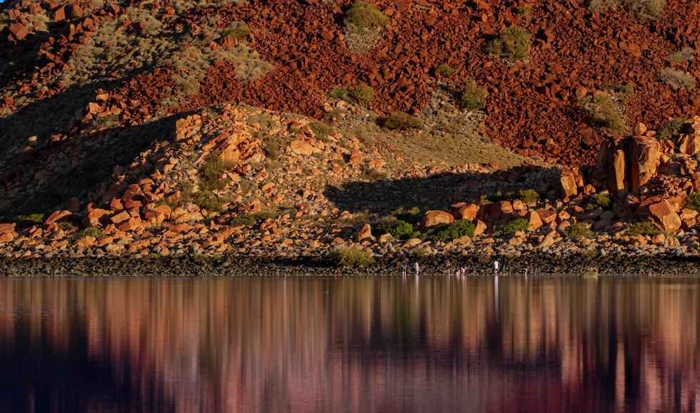 Hearson's Cove Reflections