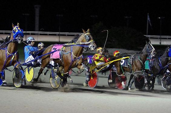 Amateur Race.jpg