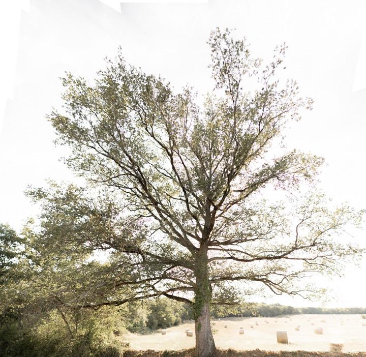 DSC01994-Panorama.jpg