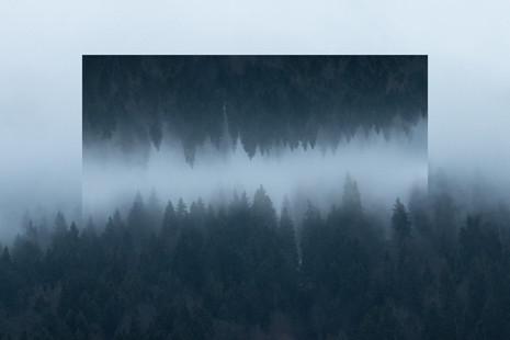 Unreal landscape