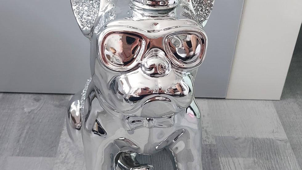 ◇Crowned Bulldog◇