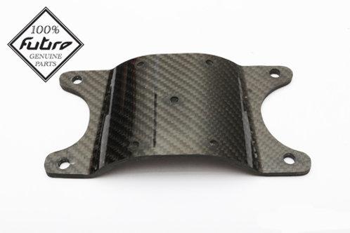 Future carbon fork brace