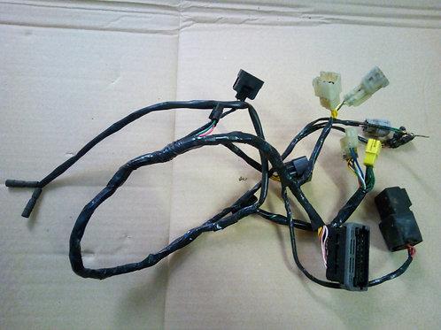 Simplified wiring loom.