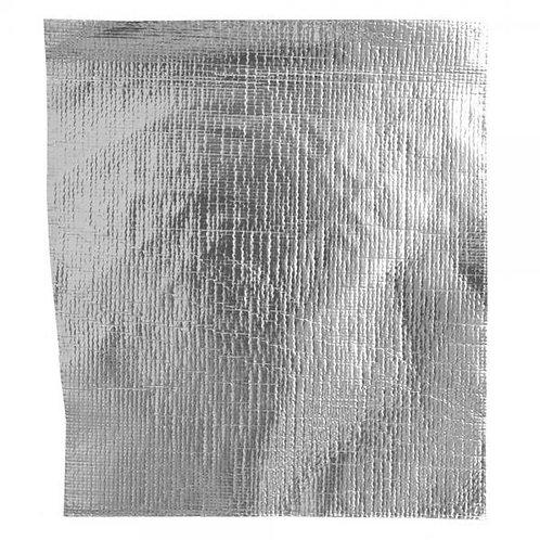 Adhesive heat shield
