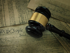 PROTECTION OF HUMAN RIGHTS IN THE INDIAN CONSTITUTION
